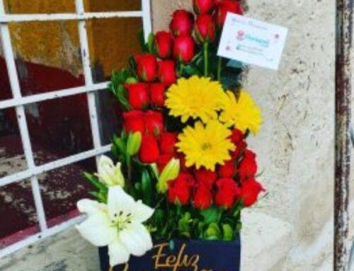 Caja de Rosas Rojas, Lilis y Gerberas