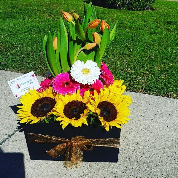 Caja de Tulipanes y Girasoles