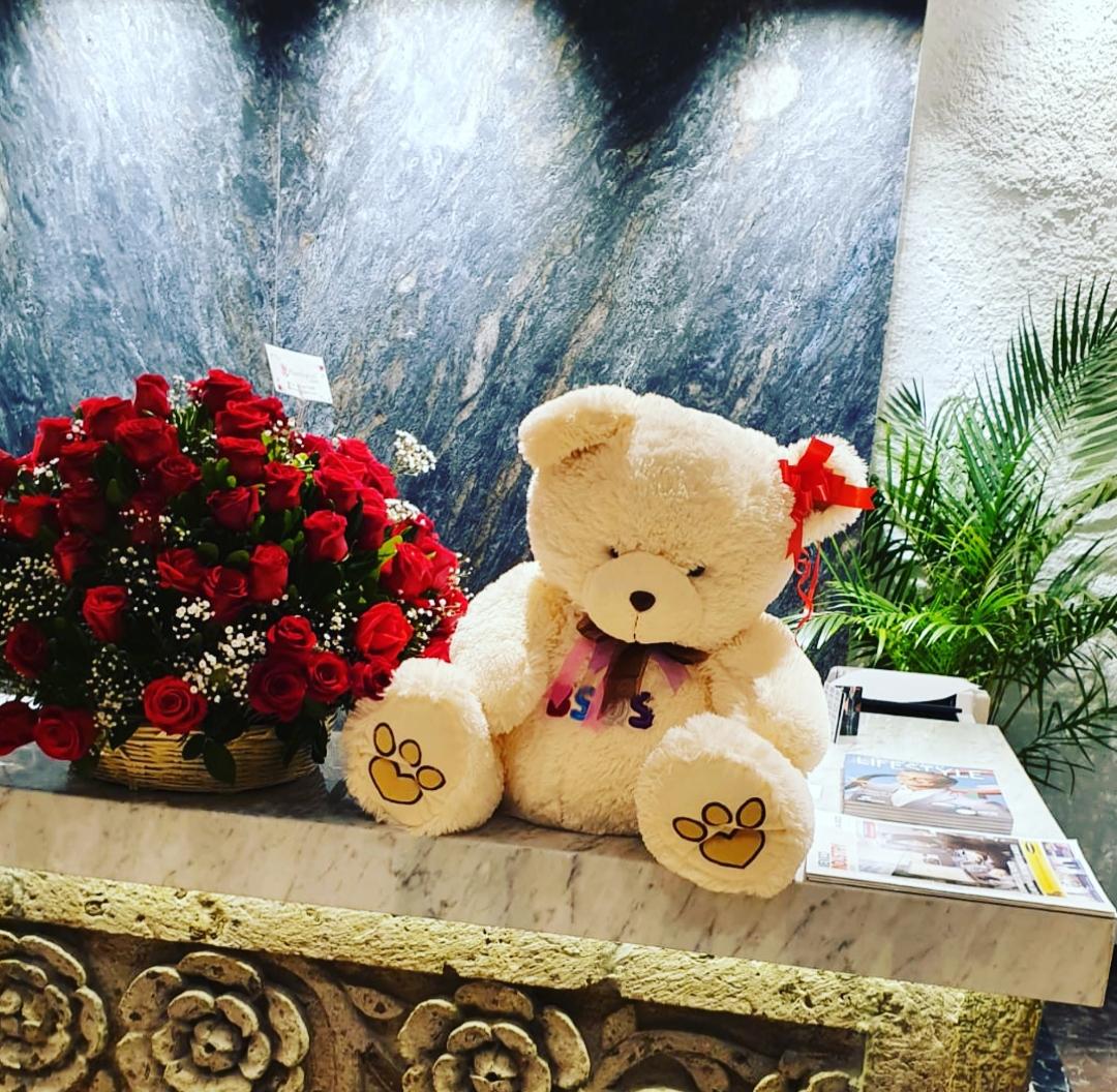 Canasta de rosas rojas y peluche
