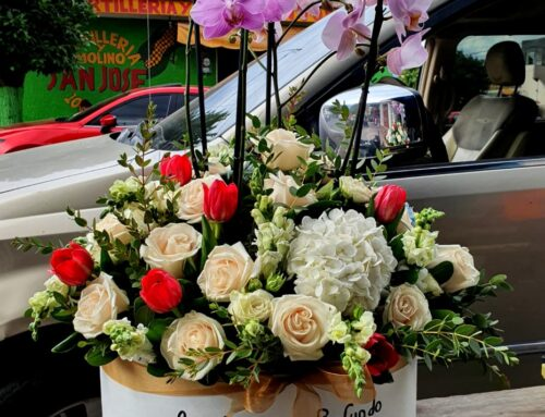 Arreglo Especial condolencia con Orquídea