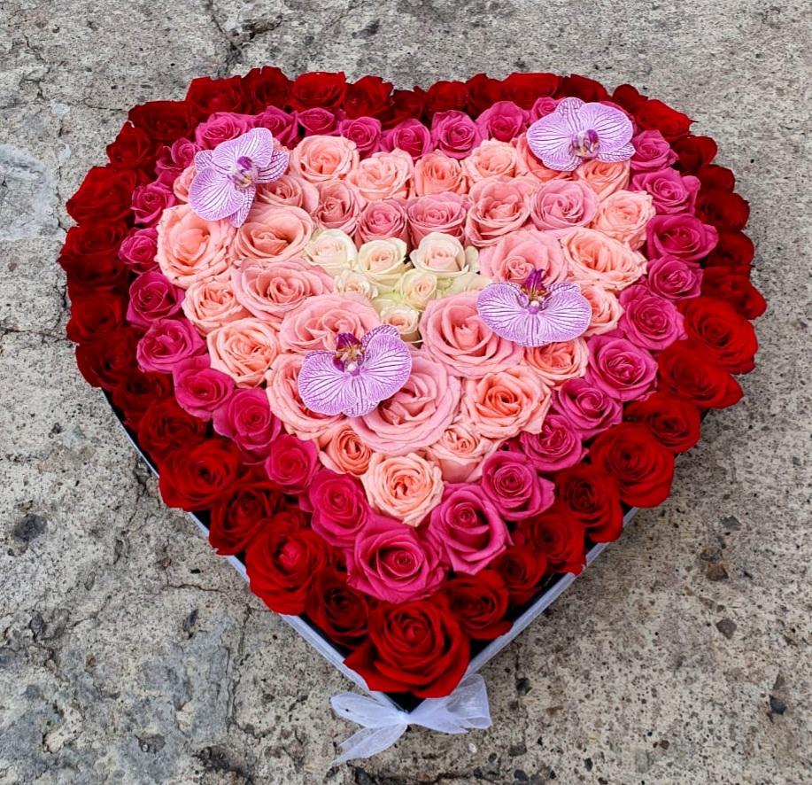 Corazón de Rosas degradado con Orquideas