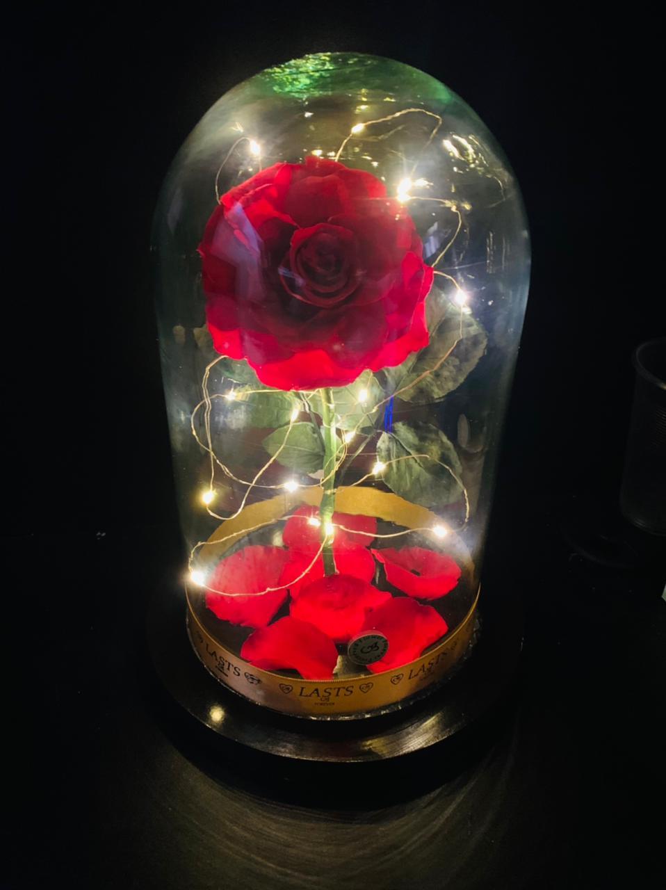 Rosa Eterna Con Luz