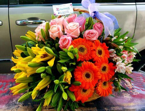 Hermoso diseño en canasta de lilis con rosas y gerberas