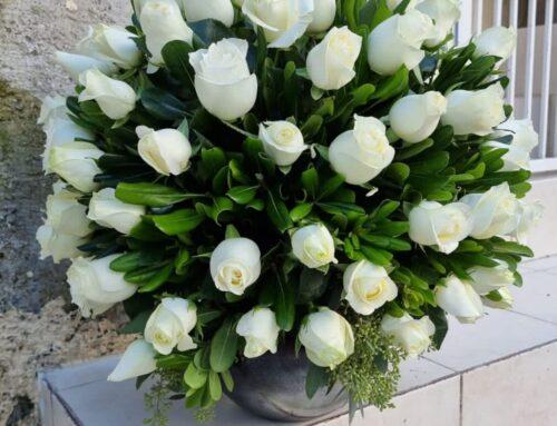 esfera de 100 rosas blancas